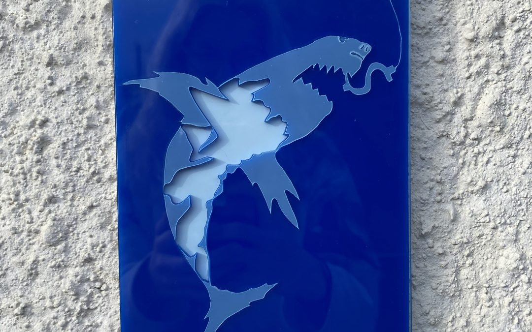 Sustainable laser cutting and sharks